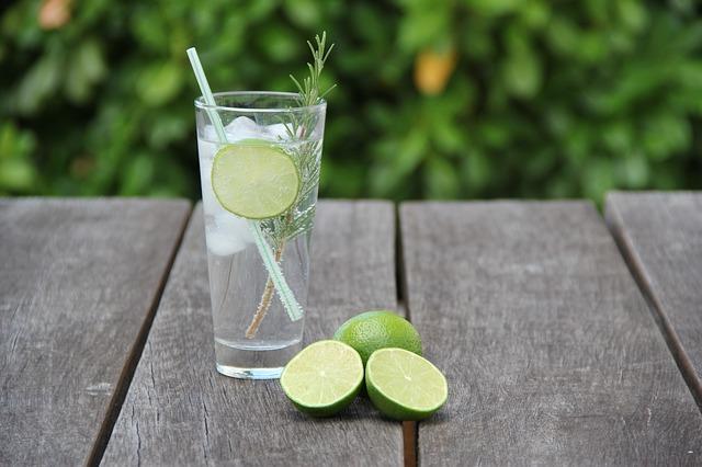 Vrijmibo-gin-tonic