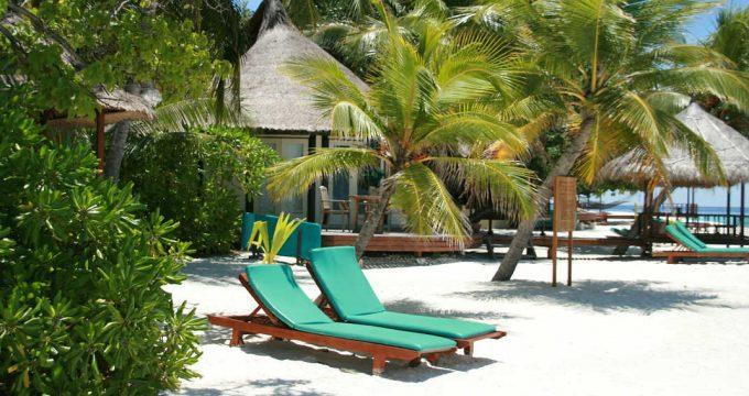 Tropisch-eiland-Malediven-04