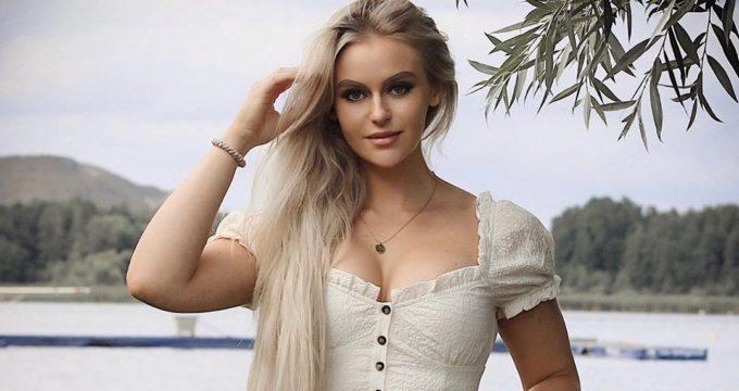 zweedse-modellen